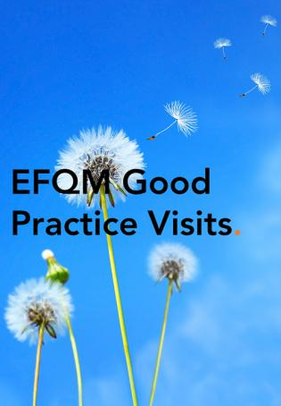 Good Practice Visit