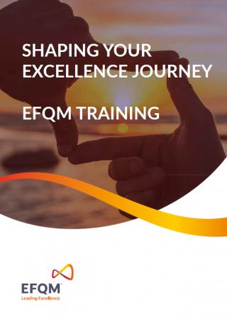 Shaping your Excellence Journey Training