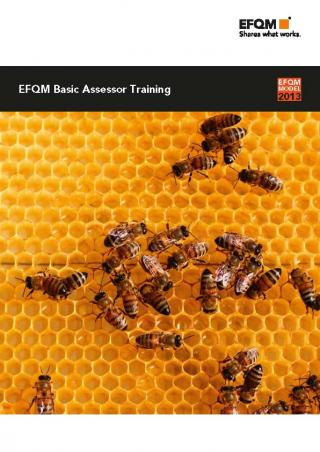 Basic Assessor Training Online