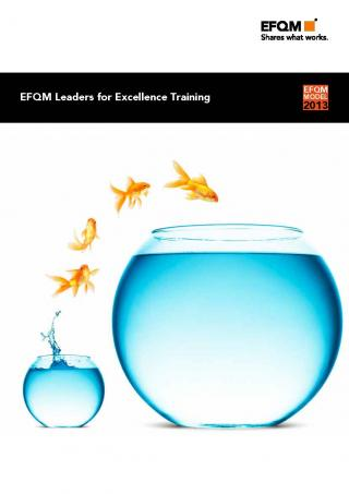 EFQM Leaders for Excellence Training
