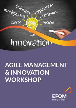 Keys to lead Agile Innovation Management Workshop